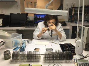 Susan at Work