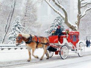 free-christmas-central-park-new-york-wallpaper_1024x768_88122
