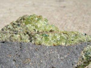 Peridot - Olivine - On Basalt