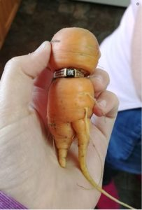 Carrot Wrapped Around Engagement Ring